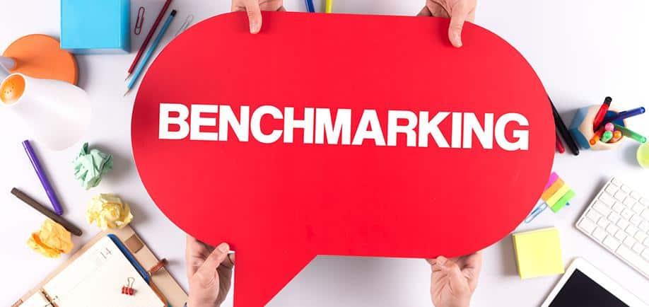 Бенчмаркінг в українському свинарстві або вчитися вести бізнес краще у «своїх»